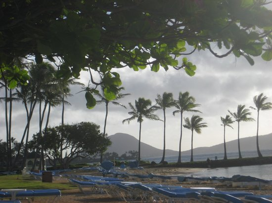 The Kahala Hotel & Resort: Such a peaceful and Hawaiian setting!