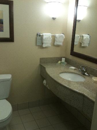 Hilton Garden Inn Chicago O'Hare Airport: Hilton Bath 2