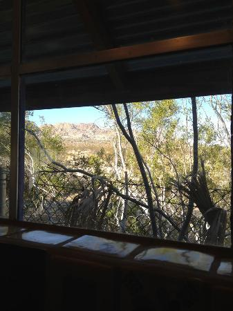 Spin and Margie's Desert Hideaway: View from kitchen window