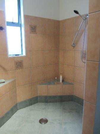 Art & Design Gallery: The very spacious shower