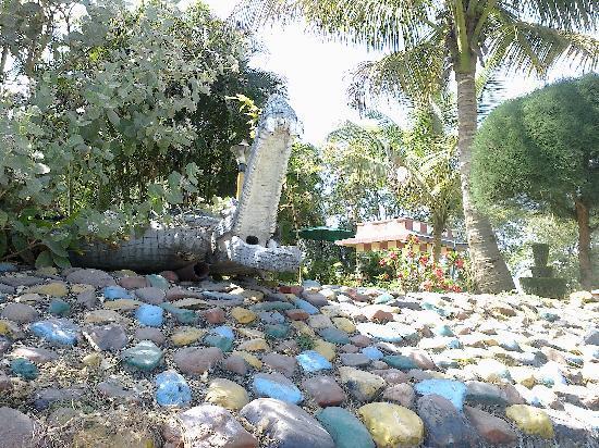 Mayank Blue Water Park: Crocodile
