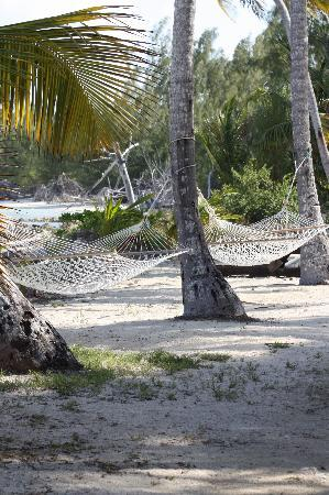 Small Hope Bay Lodge: Our napping hammock