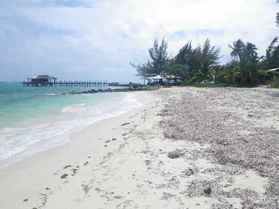 Small Hope Bay Lodge: From down the beach
