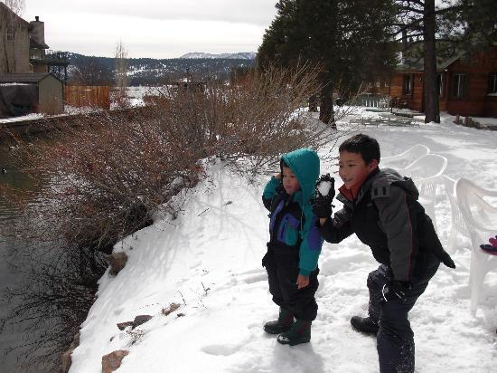 Quail Cove Lakeside Lodge: Boys throwing snowballs into the creek.