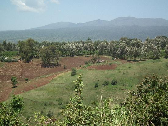 Neptune Ngorongoro Luxury Lodge: View from the lodge