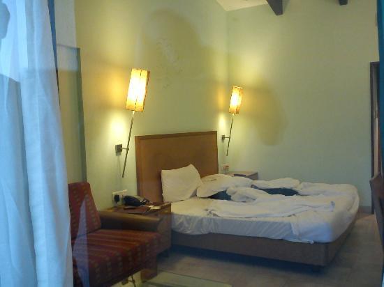 Fariyas Resort Lonavala: Premium Room