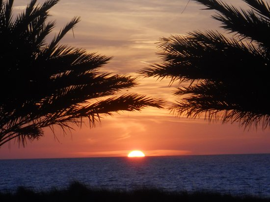 Shor American Seafood Grill: Clearwater Sunset from SHOR
