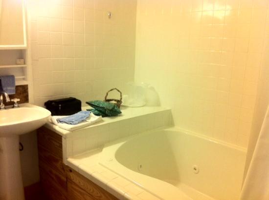 Gruene River Inn : Bathtub - Pedernales Room