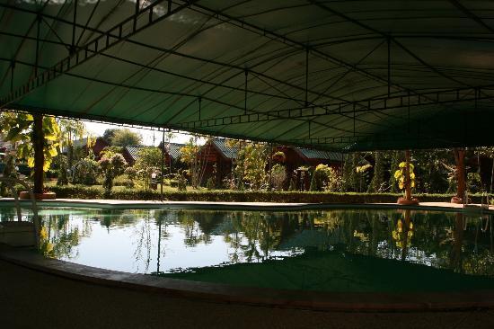 Chiangsan Goldenland Resort : Piscine et cottages
