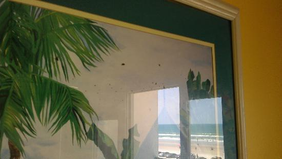 Beach Quarters Resort: bugs story