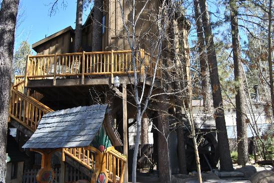 Castle Wood Theme Cottages: The Tree House