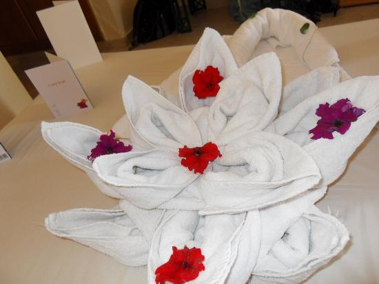 Falcon Hills Hotel: Towel display