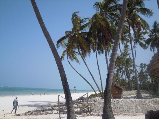 White Rose Beach Hotel : la spiaggia bianchissima