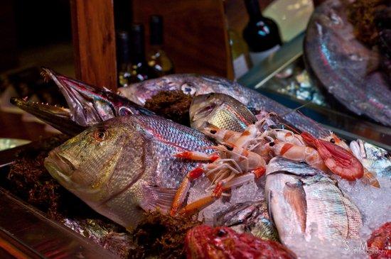 Sciacca Grill Saint Julians: Fish Display