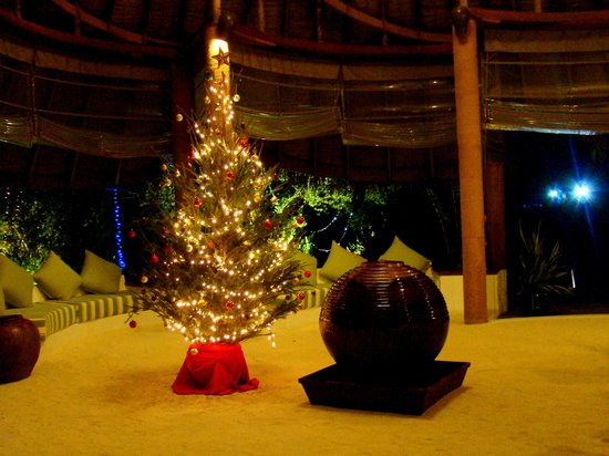 Haa Alif Atoll: New Year in Island Hideaway