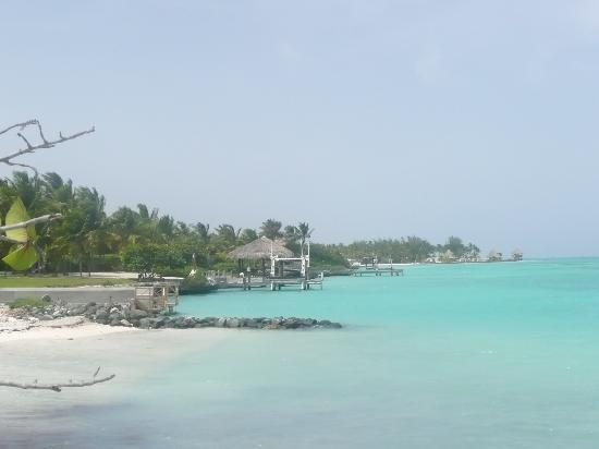 Tortuga Bay, Puntacana Resort & Club: beach at tortuga bay hotel