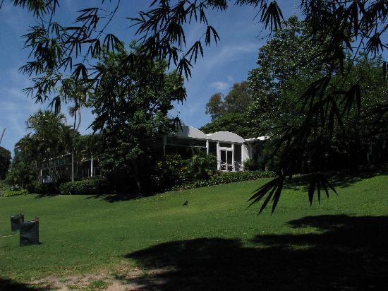Chinese garden picture of brisbane botanic gardens mt for Au jardin restaurant botanic gardens