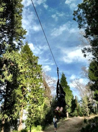 The North Shore Inn: Zip lining!!!!