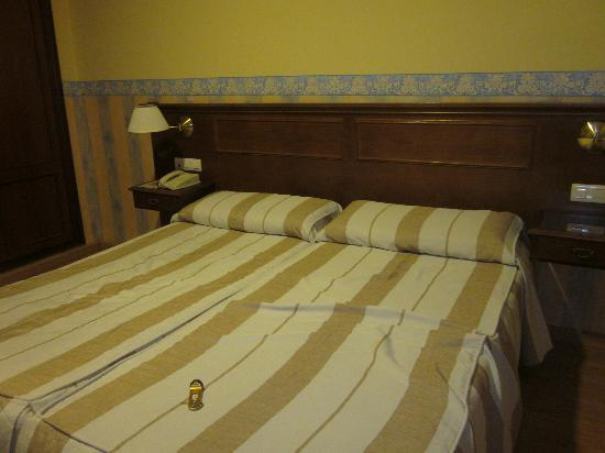Los Tilos: room