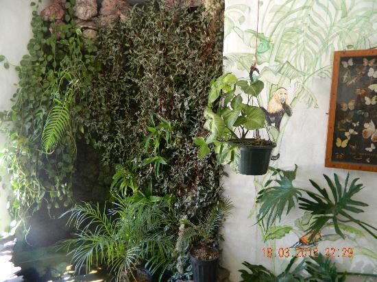 Hotel Mirador Pico Blanco : otra area d h