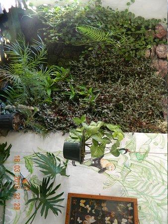 Hotel Mirador Pico Blanco: otra area d h