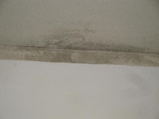 Marbellamar Hotel & Resort: humedad sobre la cama