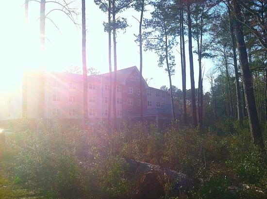 Country Inn & Suites by Radisson, Wilmington, NC: hidden in the woods.