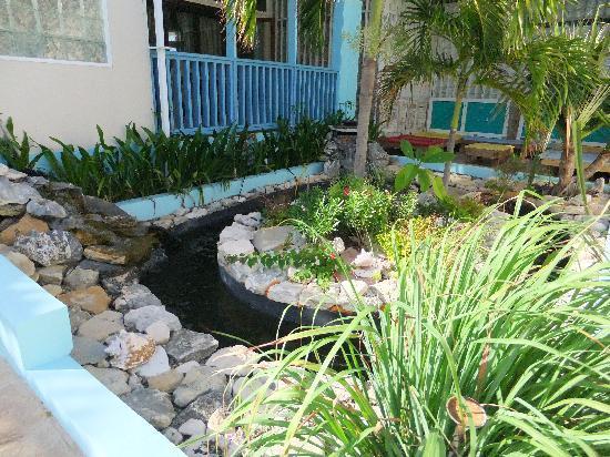 The villas of salt cay turks och caicos omd men och for Koi pool villa