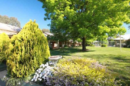 Mansfield Valley Motor Inn: Motel Gardens