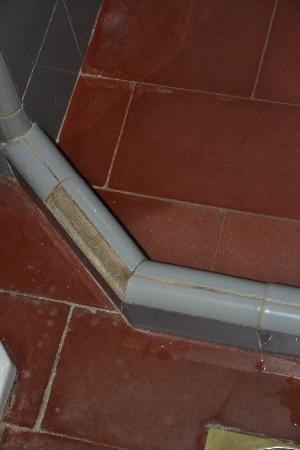Punta del Este Shelton Hotel: Missing tile in bathroom