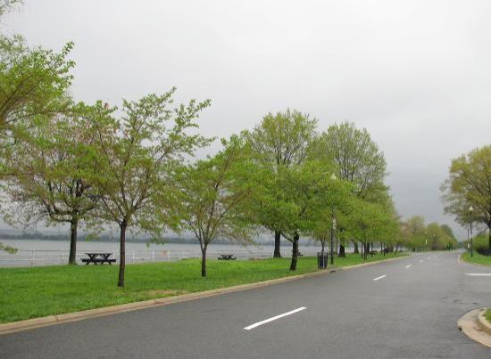 Potomac Park: Potomac Frontage