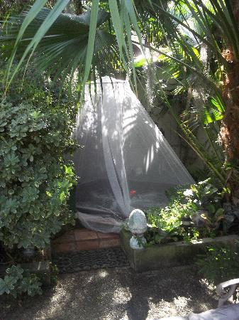 Antebellum Guest House : Hot tub!
