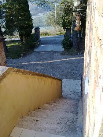 Casa Cecchi B&B: La scalinata d'accesso alle camere