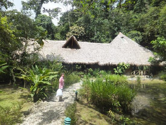 Esquinas Rainforest Lodge: Lodge