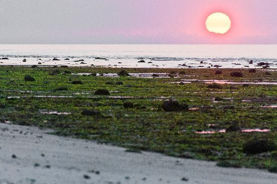 Sumba, Indonesia: Oro beach