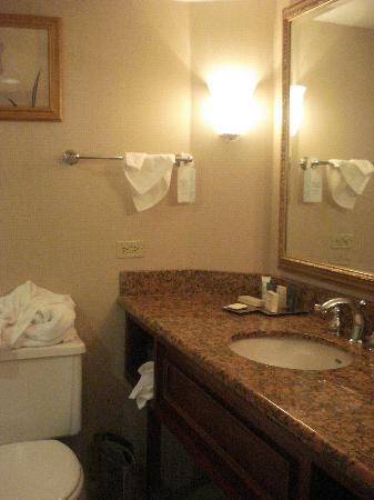 Hilton Durham near Duke University: Bathroom