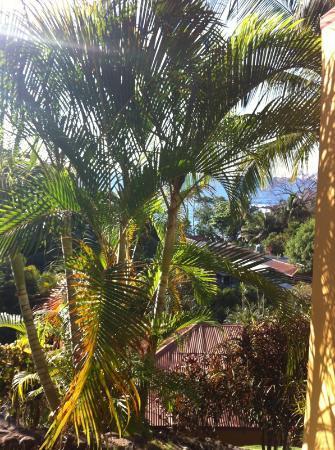 Hotel El Jardin: la vista