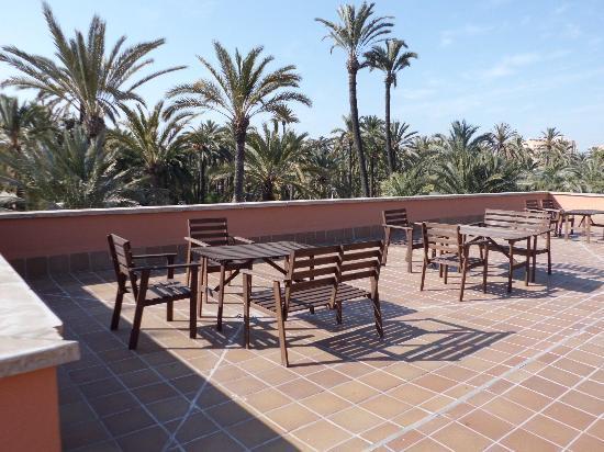 Ancora il palmeto che circonda la piscina picture of for Jardin milenio elche