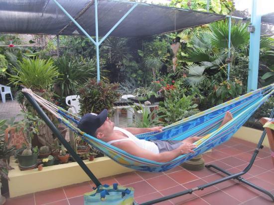 Hidden Eden Aruba: relaxation