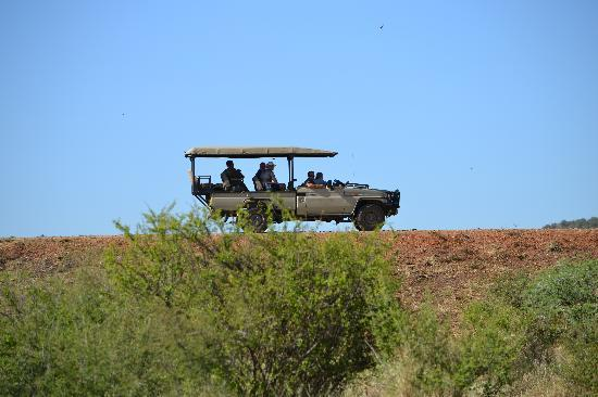 Tuningi Safari Lodge: Oh Madikwe!