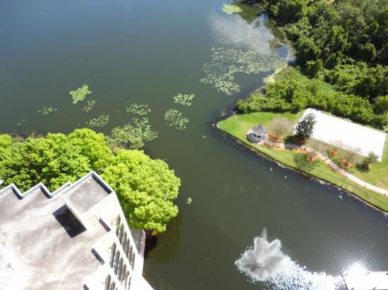 Hilton Orlando Buena Vista Palace Disney Springs: room view
