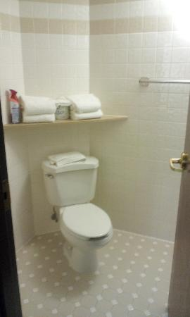 Drury Inn & Suites Greensboro: actual bathrooms are tiny throughout this facility