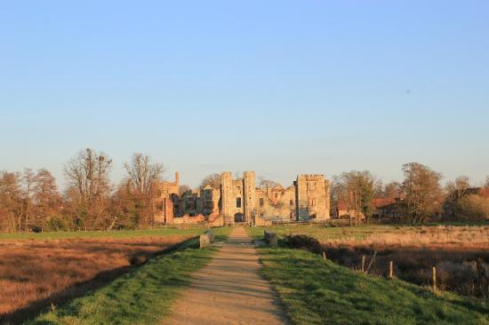The Angel Inn: Cowdray ruins a few minutes away