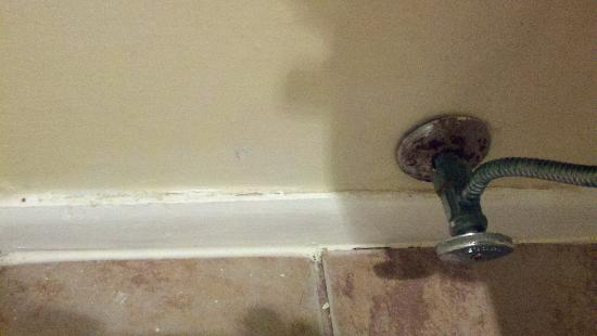 Days Inn Suites Fredericksburg: Filthy base boards, corroded plumbing