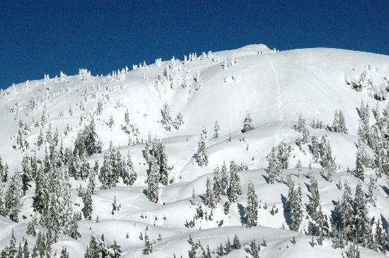 Mt Seymour: Some amazing places to explore if you're up for it and go prepared.