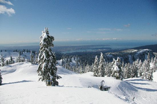 Beautiful view of the city from Mt Seymour