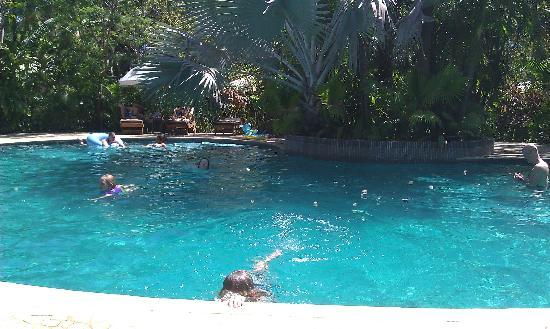 Harmony Hotel Nosara: The pool at Harmony