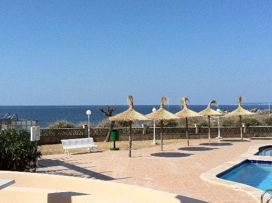 Universal Hotel Don Leon: Blick zum Meer vom Schwimmbad aus