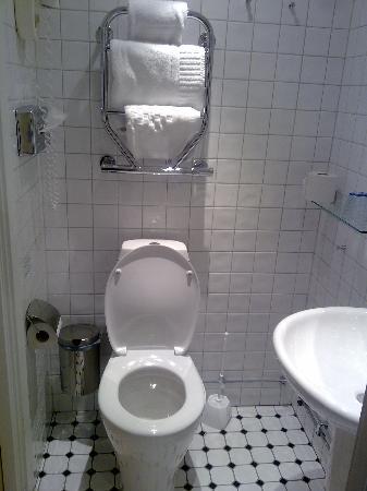 Comfort Hotel City Center: toilet