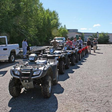 Absolute Adventure Tours day trips : All lined up and ready to go.....